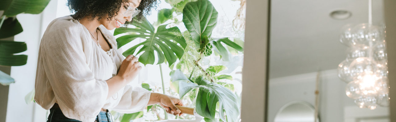 How Plants are Important for Better Lifestyle